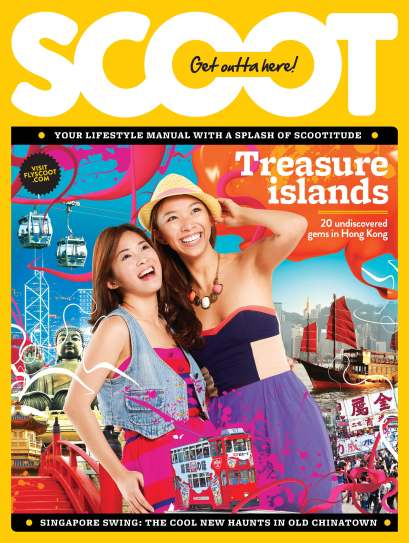 P0 SCOOT COVER
